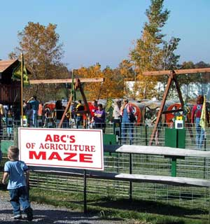 Learn some AgriFacts as you twist through our maze and play at the pumpkin patch.