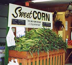 There is nothing like fresh sweet corn and at Gro-Moore Farm Market, Greenhouse and Pumpkin Patch, Henrietta, New York you can get it right off the husk!